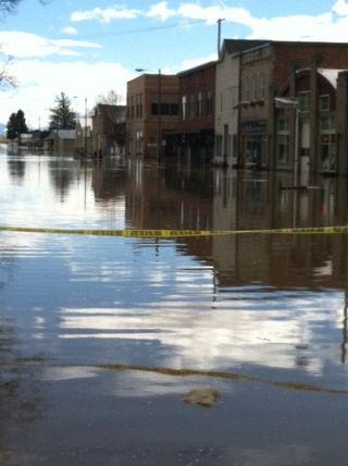GFP Flood #1