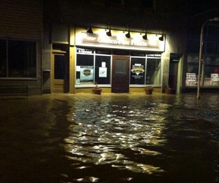GFP Flood night
